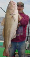 Bunny clark deep sea fishing maine the maine beaches for Maine deep sea fishing charters