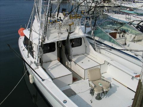 Block island sportfishing charters rhode island block for Block island fishing charters