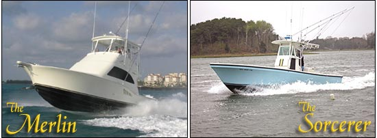 Merlin Sportfishing