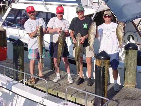 Naples deep sea fishing charters florida south west for Naples deep sea fishing