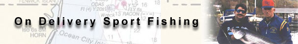 On Delivery Sportfishing