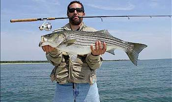 Pathfinder charter fishing new york long island fishing for Long island fishing charters