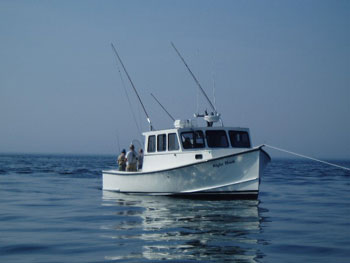 Right hook fishing charters llc connecticut new london for Right hook fishing charters
